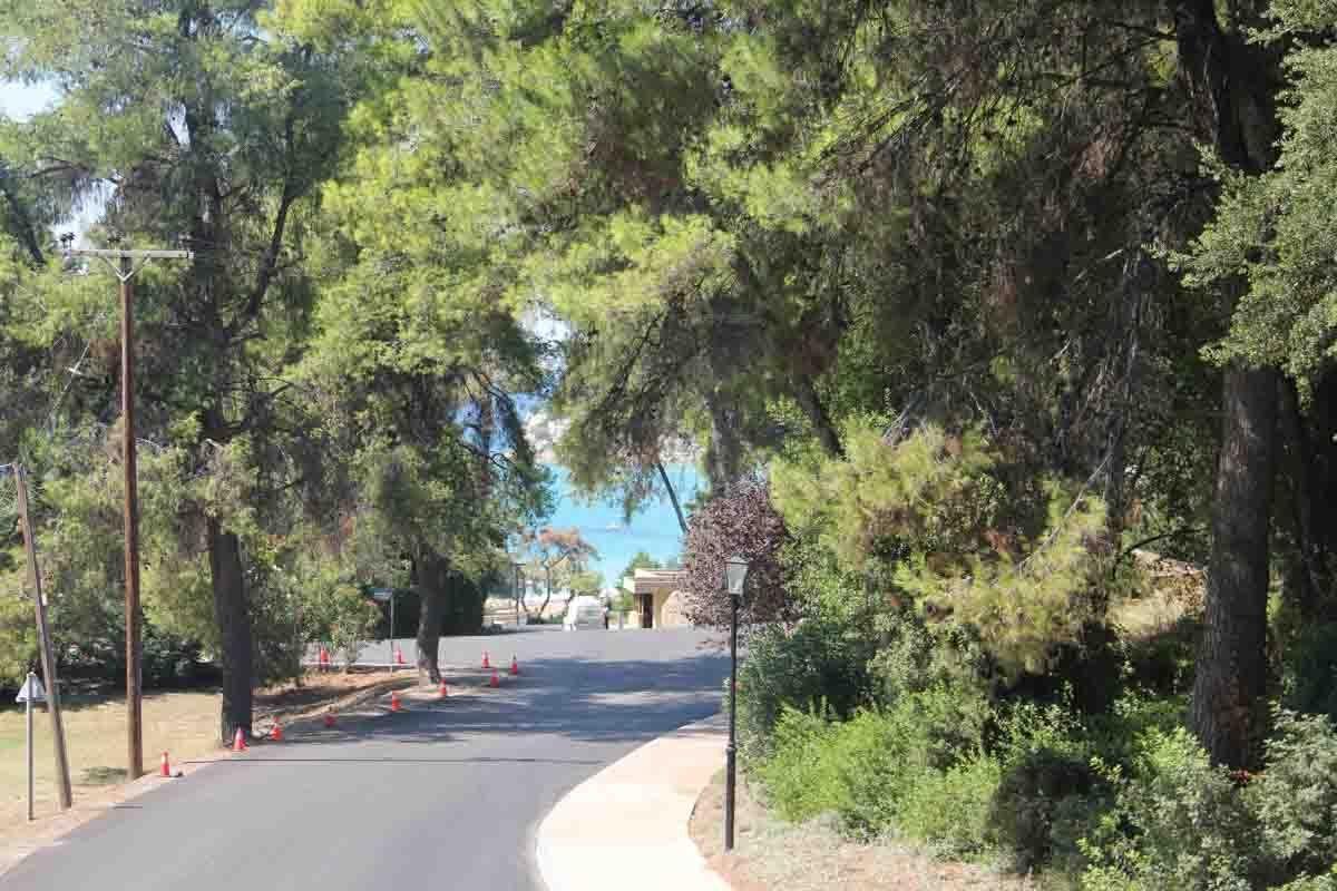 daponte-street-view (6)