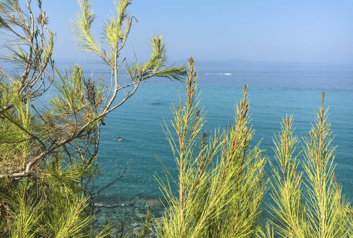 kassandra nature rentaway