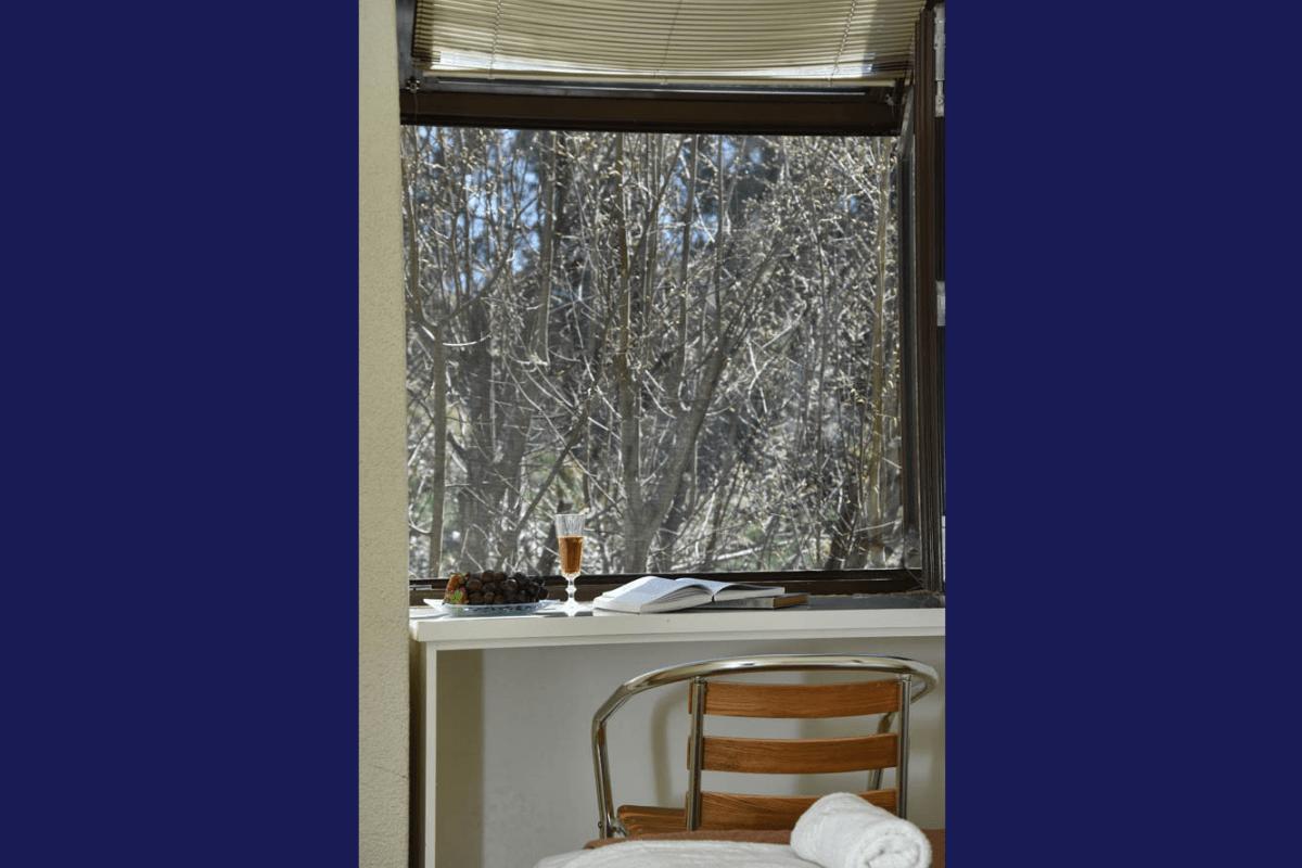 window view sani